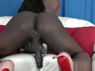 Busty black trans solo masturbating